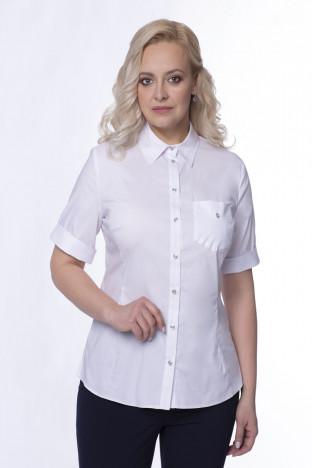 блуза Bl3091